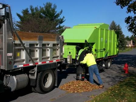 Curbside Yard Waste Removal